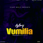 AUDIO | Aslay – Vumilia | Download Audio Mp3